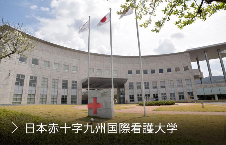 赤十字 大学 日本 看護 カリキュラム(看護学部)